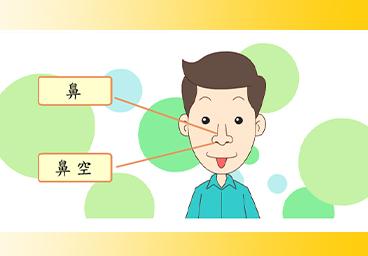 臺語常用語彙(3)鼻