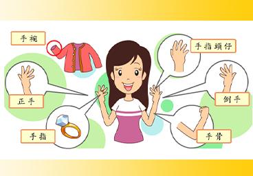 臺語常用語彙(5)手