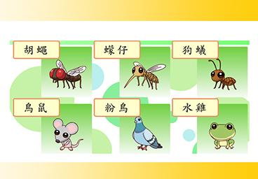 臺語常用語彙(15)動物