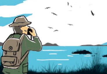賞鳥讀一讀